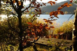 Herbst in Fuschl am See