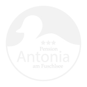 logo-pension-antonia-white